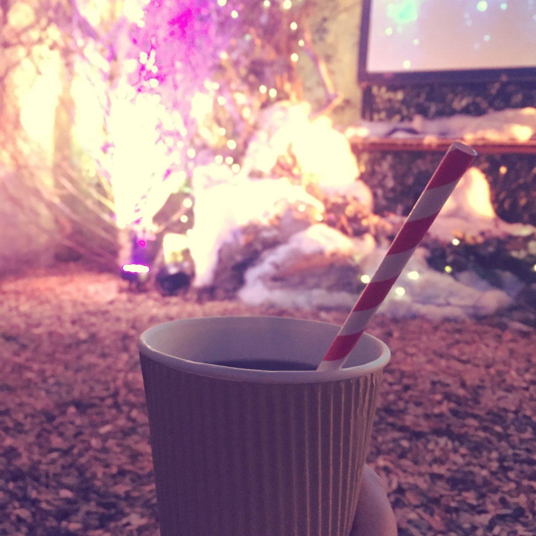 winternightgarden1