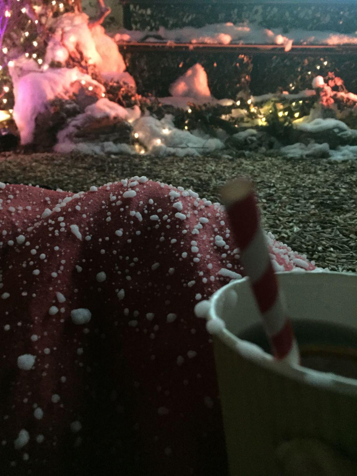 winternightgarden4